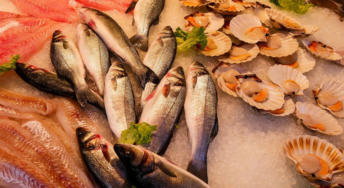 OECS High-Level WTO Fisheries Workshop