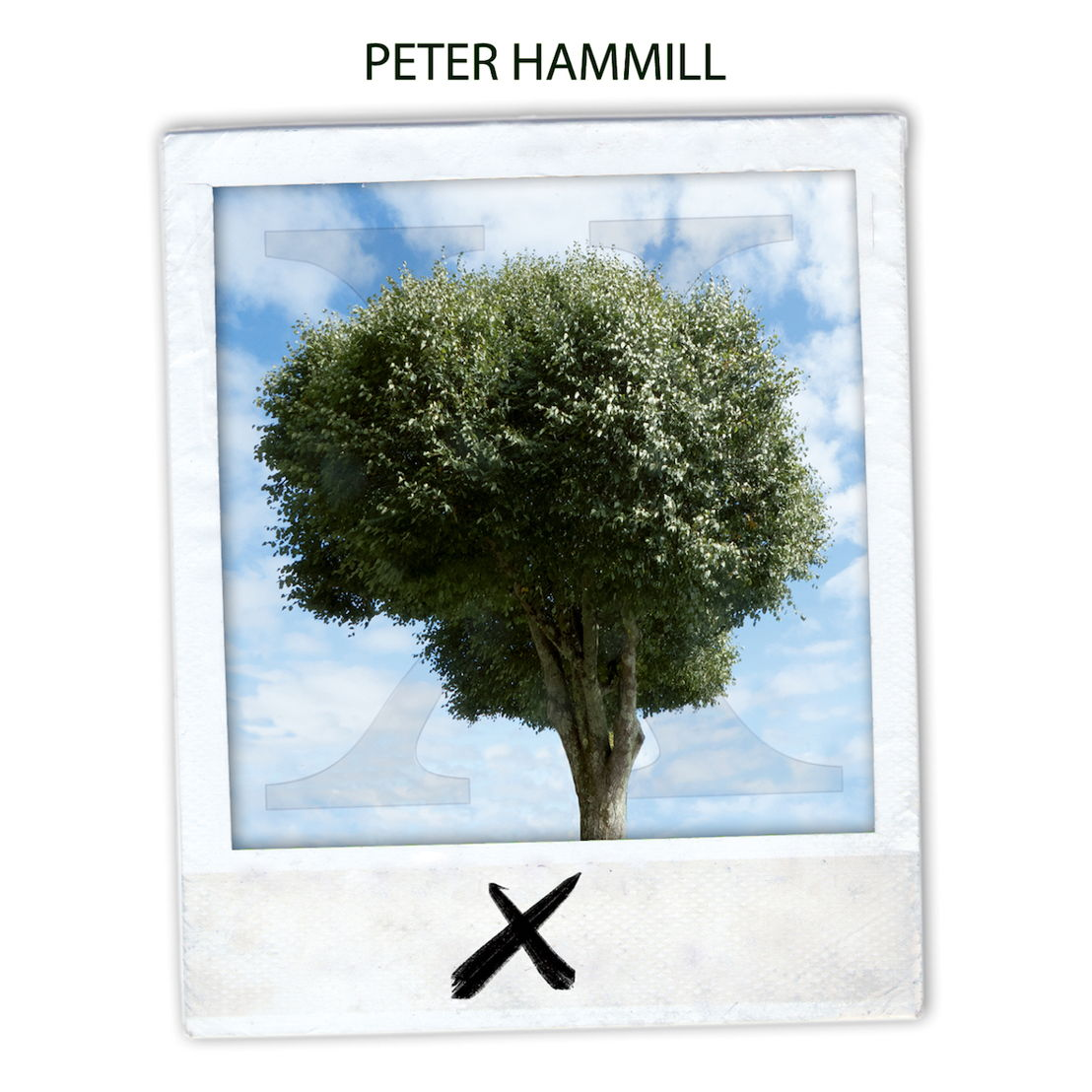 PETER HAMMILL X/Ten Album cover artwork