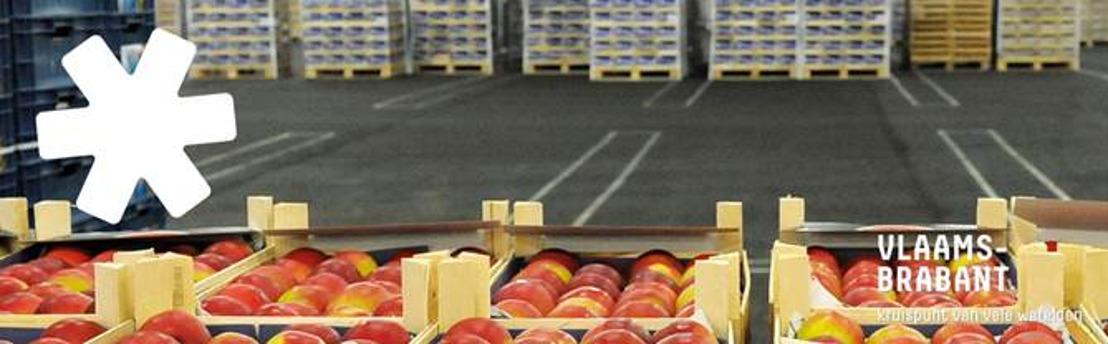 Bedrijven lokken naar Zuid-Oost Hageland