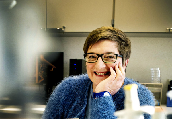 Preview: VUB-prof Karen Sermon voorzitter European Society for Human Reproduction and Embryology