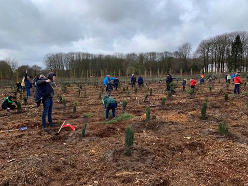 6.200 arbres plantés en un jour à Waasmunster sur un total de 18.000 arbres grâce à Forest in One Day