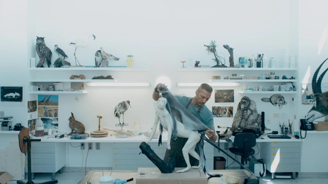 Een andere kijk - Taxidermist Christophe De Mey met aap