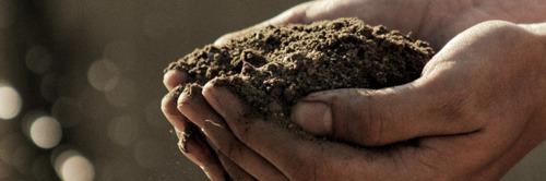 Crise du COVID : Vers des systèmes alimentaires sains, durables et résilients