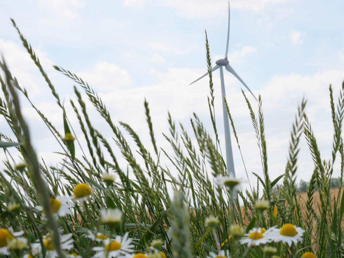 Luminus, Windkracht Wlaanderen et W-Kracht organisent une session d'information en ligne sur le projet éolien « De Zesling » à Oostkamp et Beernem