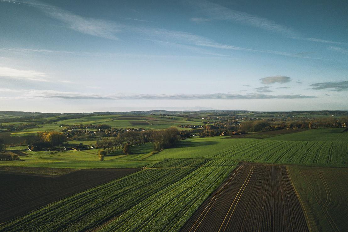 Heuvelachtig landschap Vlaamse Ardennen