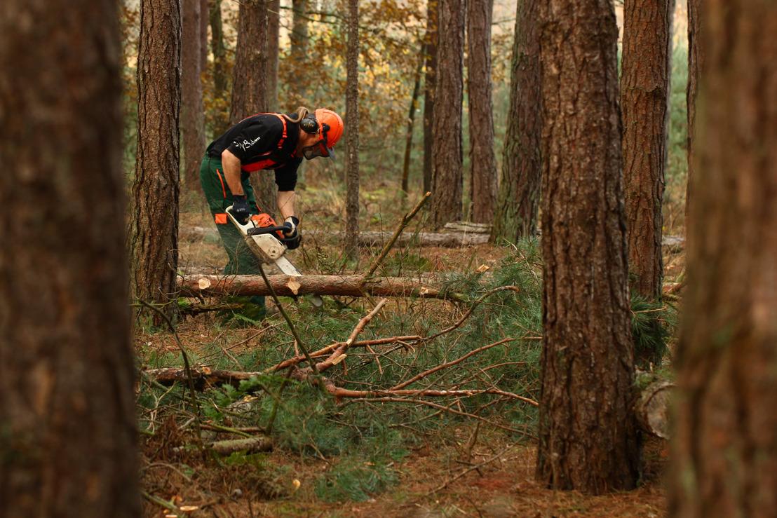 Verplicht certificaat moet ongevallen met kettingzaag in openbare bossen verminderen