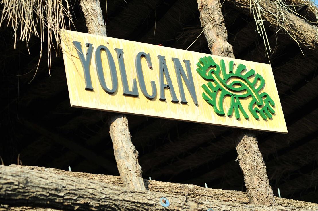Yolcan