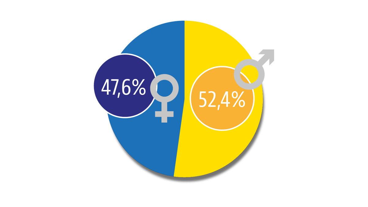 Brusselse jobs volgens geslacht. Bron: Statbel.