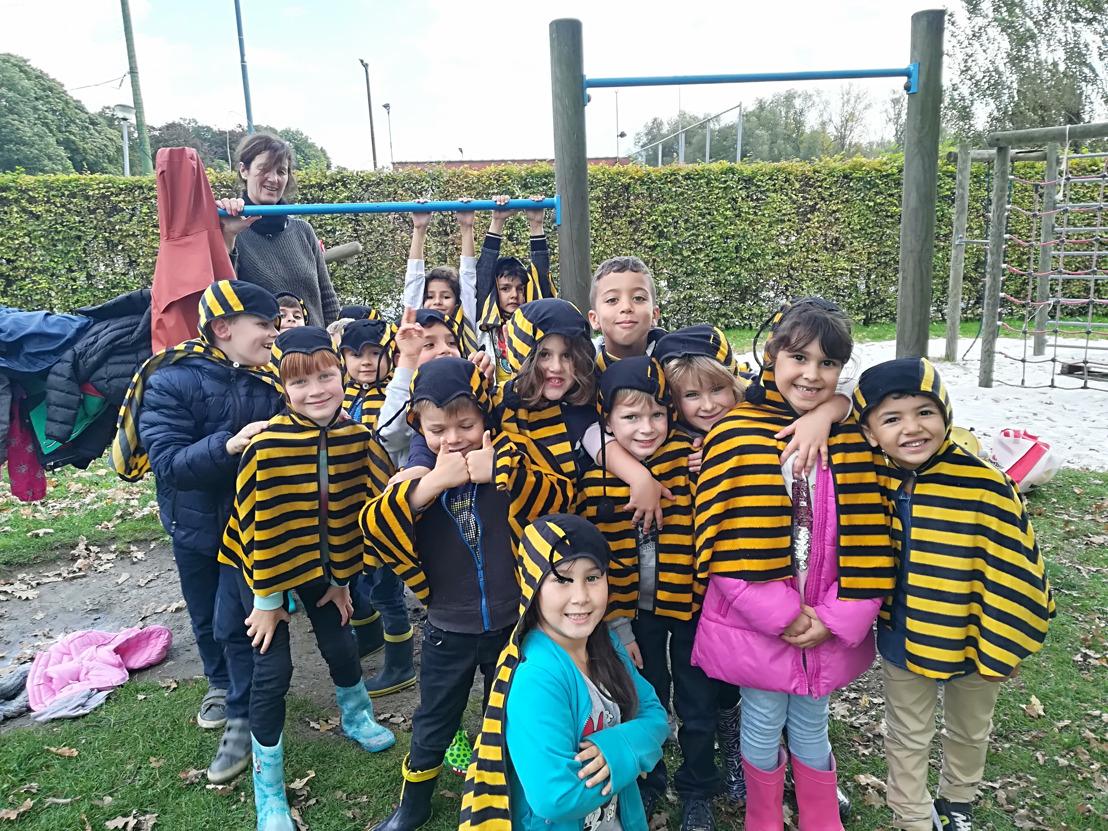 Regionale Landschappen van Vlaams-Brabant werken samen voor wilde bijen