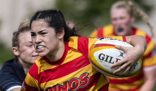 RUGBY: 15s season begins Sept. 6