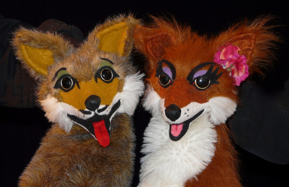 Brother Coyote and Sister Fox (Diane Pavelin)