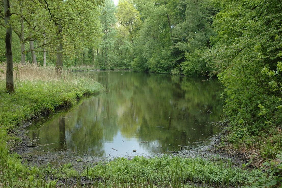 Park Groenenberg, (c) Agentschap voor Natuur en Bos
