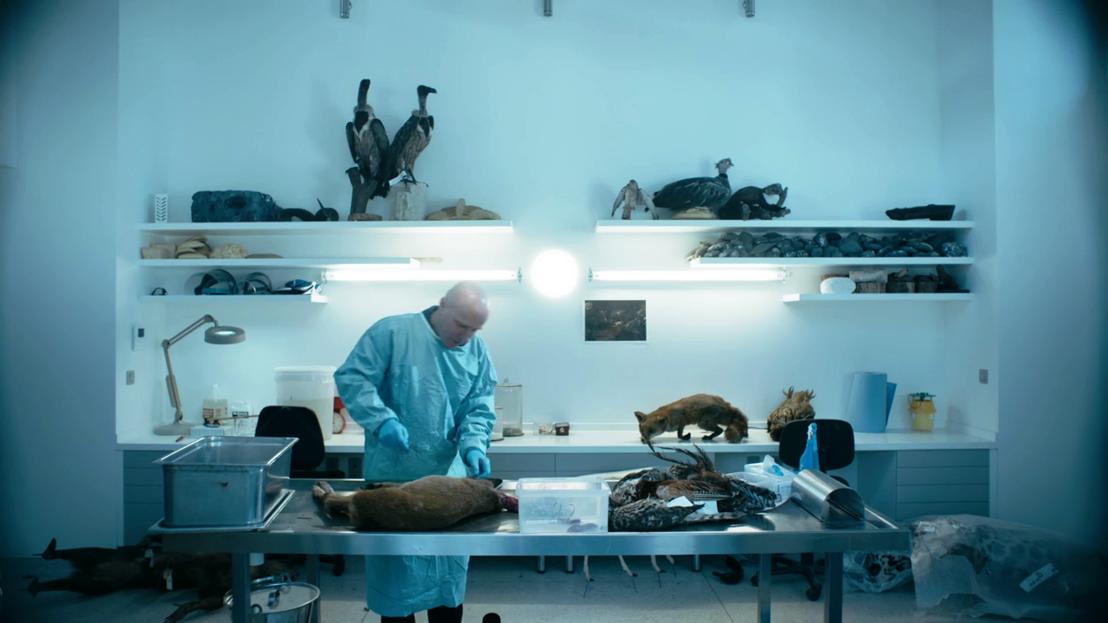 De zoekende mens - Wim Wouters dissecteert