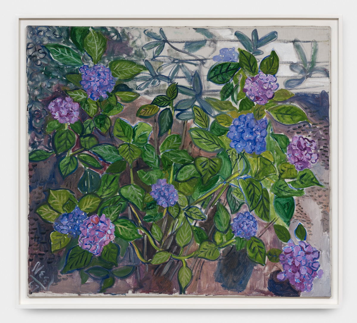 Alice Neel (1900-1984) Hydrangeas, 1967. Oil on canvas. 101,6 x 114,3 cm. Photo-credit: HV-studio, Brussels Courtesy: the Estate of Alice Neel and Xavier Hufkens, Brussels