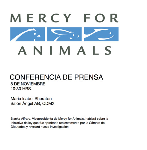 RECORDATORIO: CONFERENCIA DE PRENSA MERCY FOR ANIMALS // 8 NOVIEMBRE
