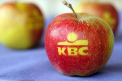 Le volume des avoirs d'épargne chez KBC/CBC continue de croître et atteint 41,95 milliards d'euros.