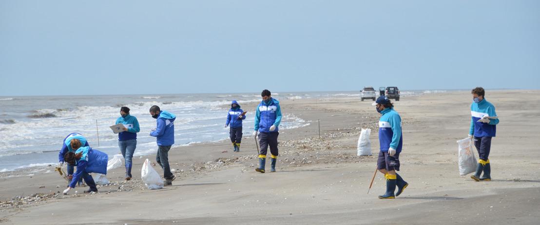 Se llevó a cabo un censo y limpieza de playas en el Partido de la Costa: el 86% de los residuos encontrados fueron plásticos
