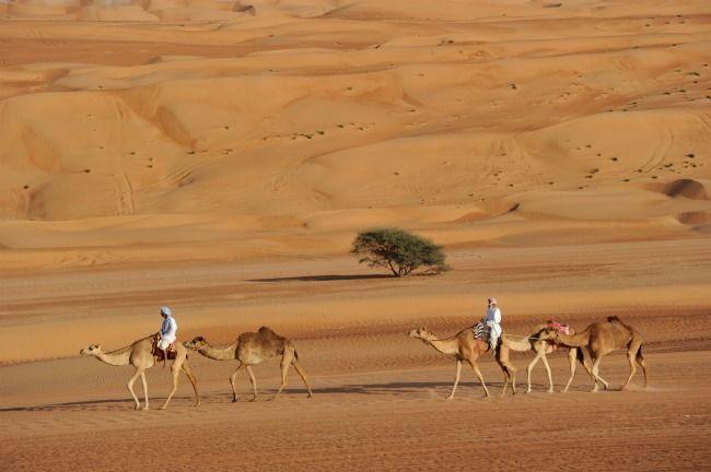 Vreemde Kontinenten - Oman