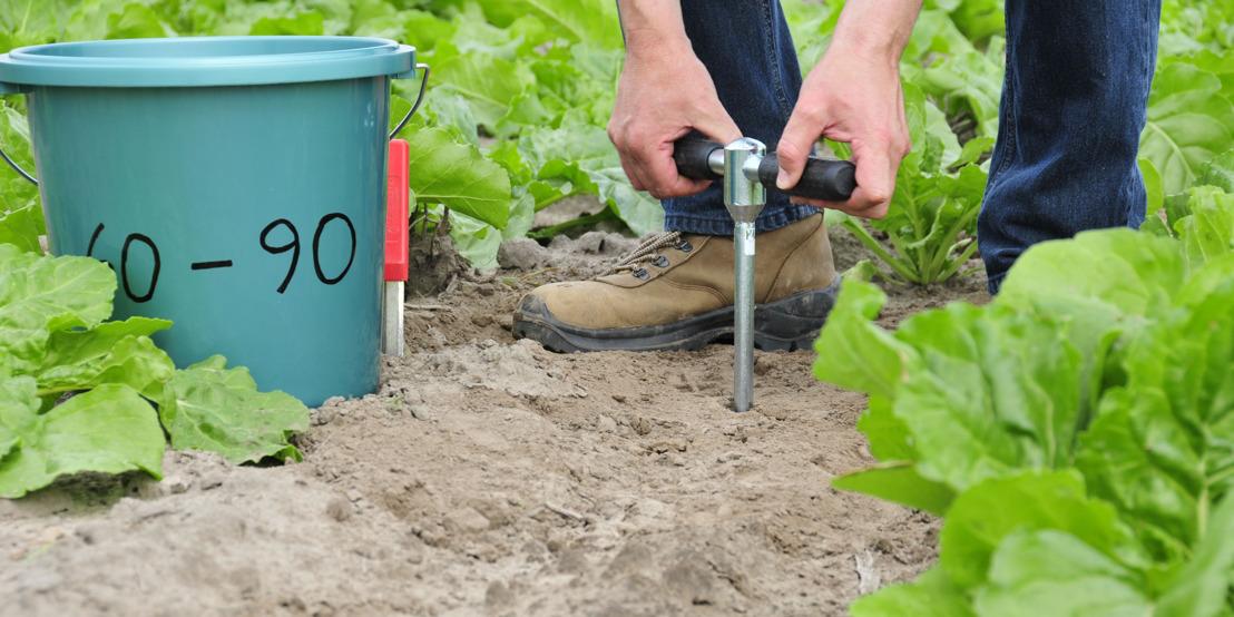 Zijn op uw bedrijf percelen geselecteerd voor nitraatresidubepalingen in 2018?