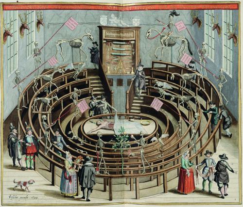 Vesalius (1514-1564) kruipt dit najaar onder je huid in Leuven
