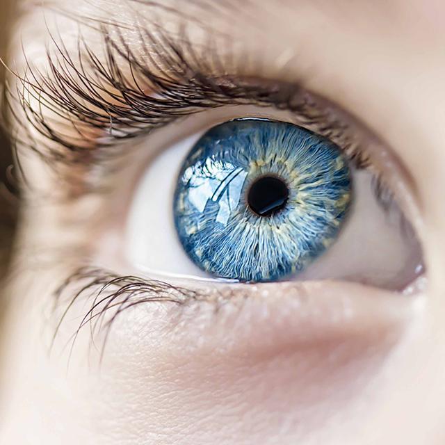 Wereld Glaucoom Week  © Shutterstock