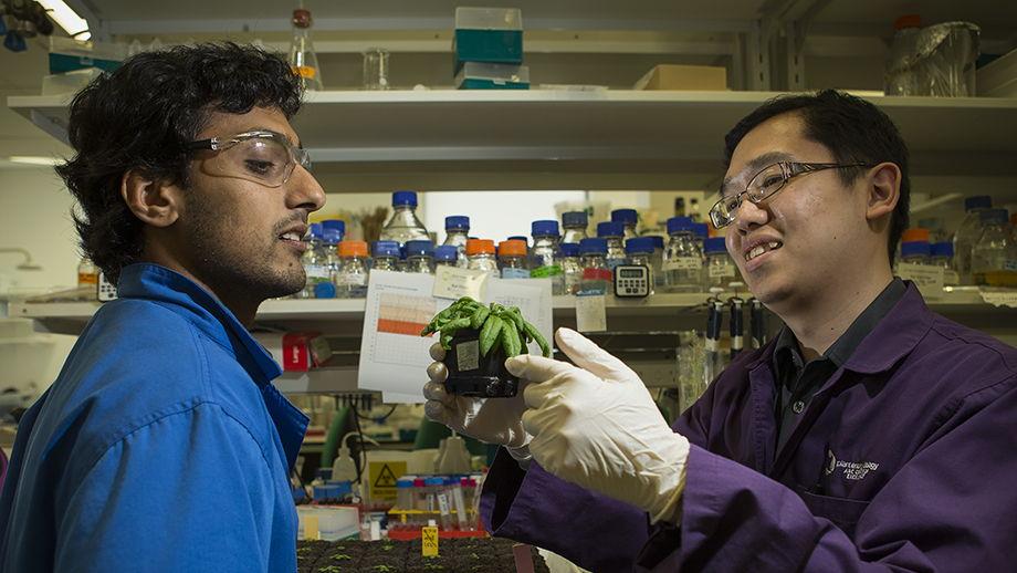 Diep Ganguly and Dr Kai Xun Chan. Image: Stuart Hay, ANU.