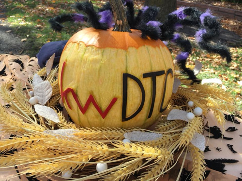 Thousands of people trick or treat their way through the Keller Williams DTC Halloween Festival