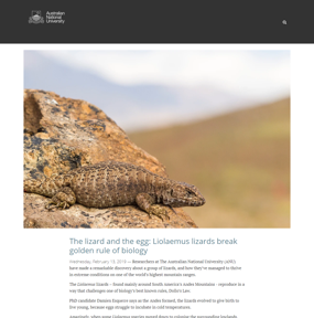 The lizard and the egg: Liolaemus lizards break golden rule of biology