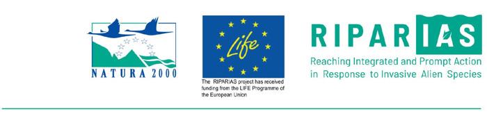 LIFE RIPARIAS uit de startblokken: 7 miljoen euro in de strijd tegen invasieve uitheemse soorten in België