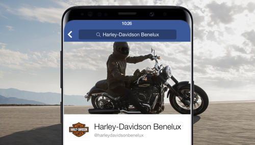 Head Office and Harley-Davidson like each other