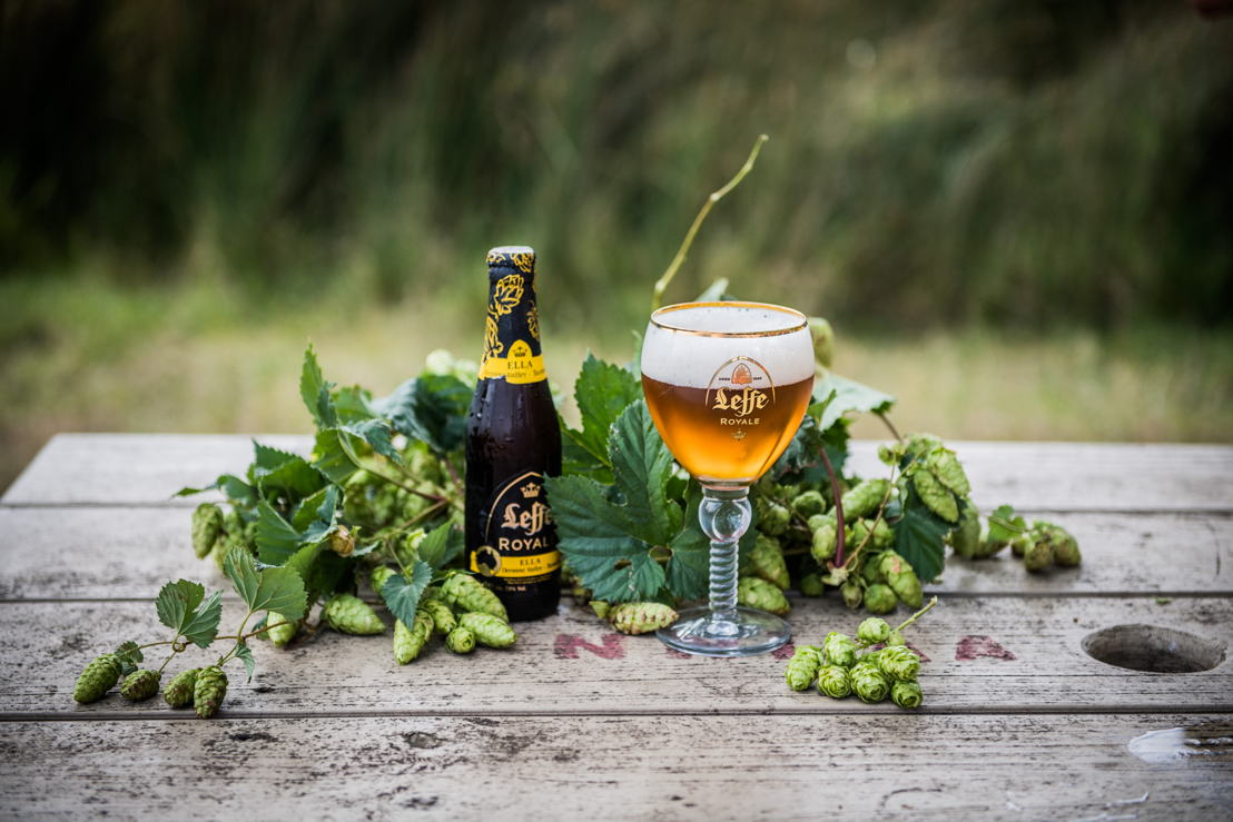 Leffe Royale Ella with Ella hops coming home in Bushy Park