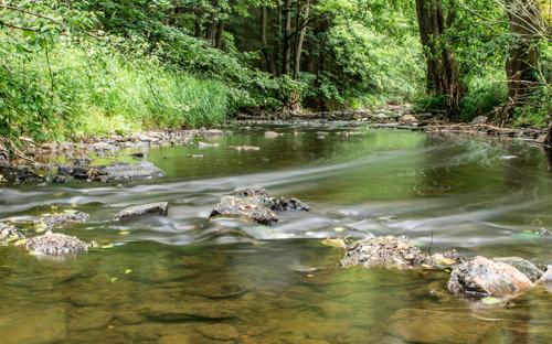Europese Water Richtlijn gered nadat honderdduizenden Europeanen oproep van WWF tekenden
