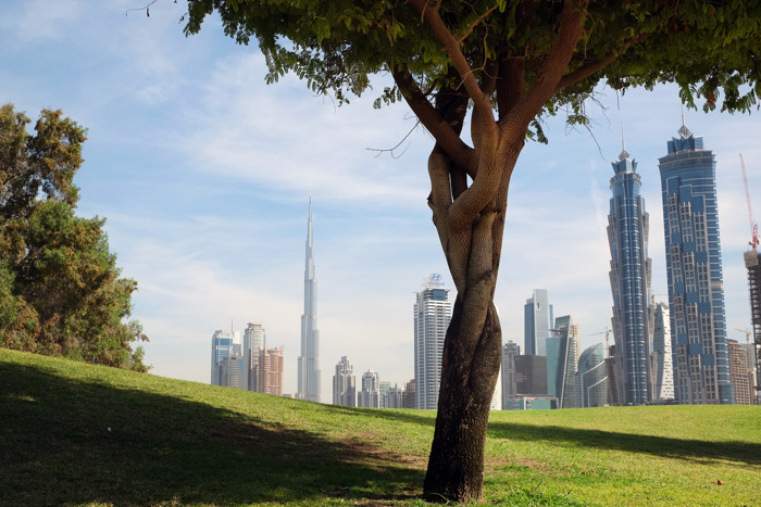 EXPERTS FORECAST URBAN GREENING AND LANDSCAPING TO HIT GCC MARKETS