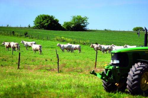 Landbouwpaspoort voor alle Vlaamse gemeenten