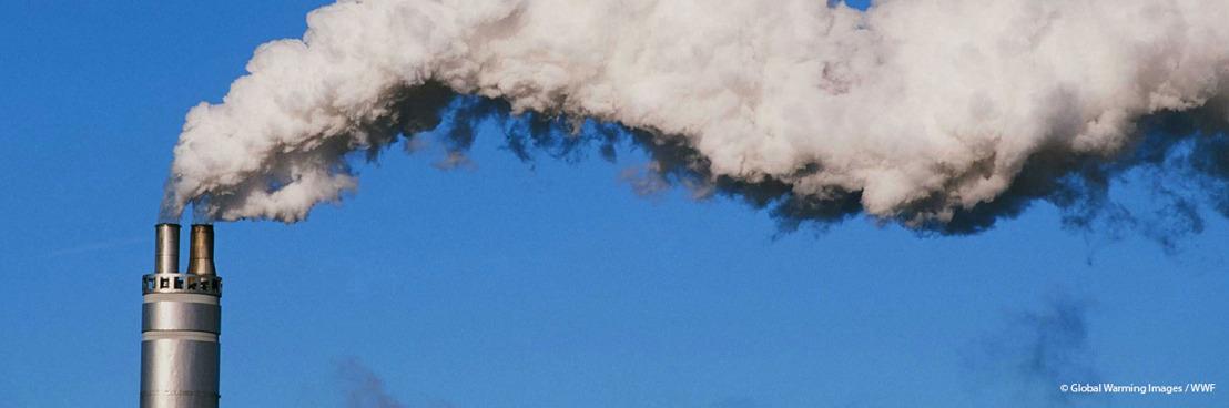 Belgische banken investeren nog steeds 40 miljard euro in fossiele energie, zegt klimaatcoalitie