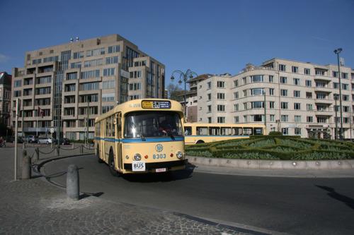 Ritjes met historische bussen voor de 50ste verjaardag van buslijn 28