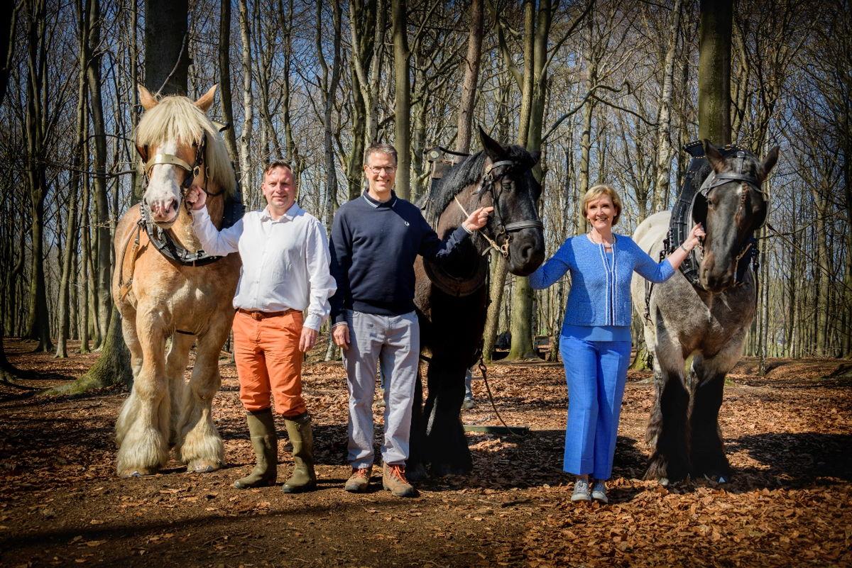 Een foto uit het nieuwe trekpaardmagazine: gedeputeerden Gunther Coppens, Tom Dehaene en Ann Schevenels bij enkele trekpaarden (copyright: Lander Loeckx)