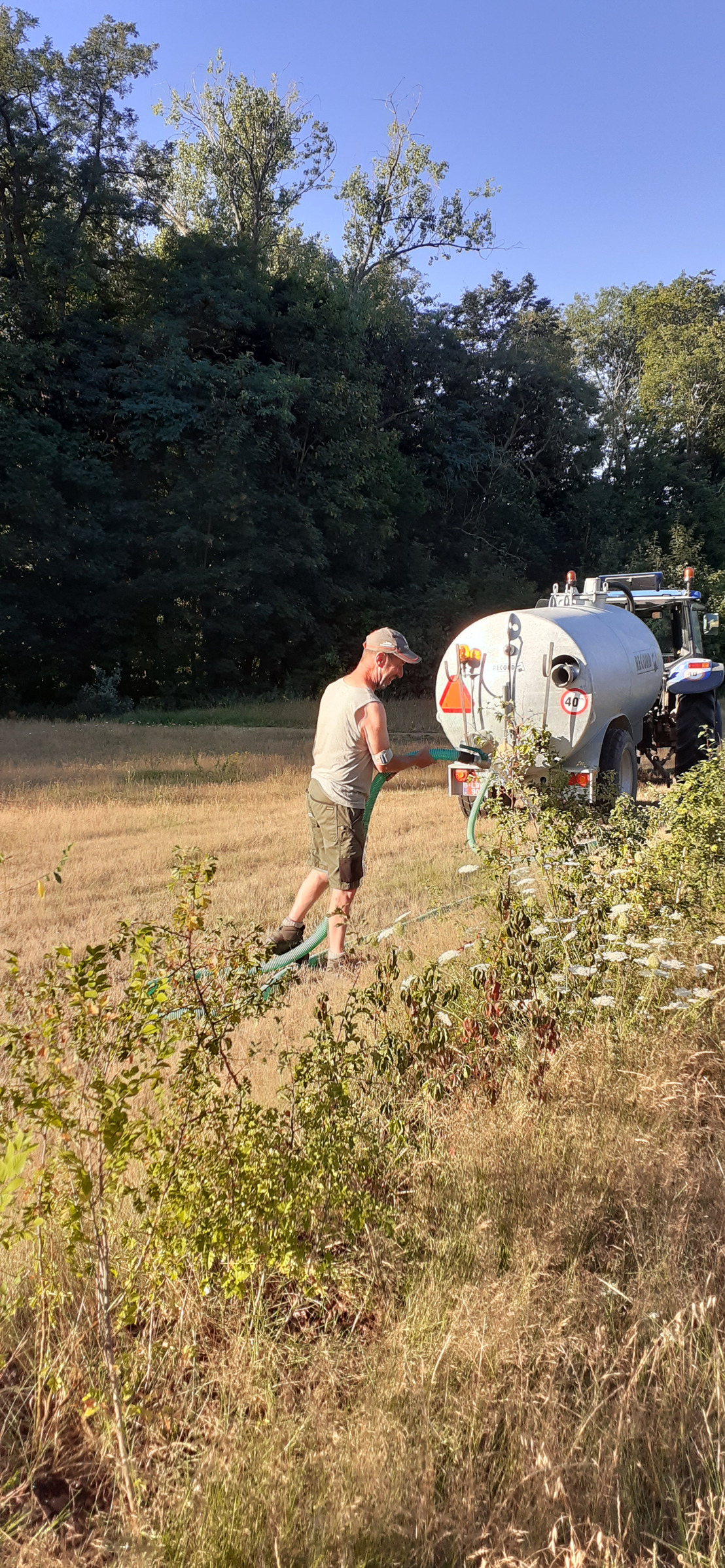 Provinciedomein Kessel-Lo hergebruikt brouwerijwater voor planten tijdens hittegolf