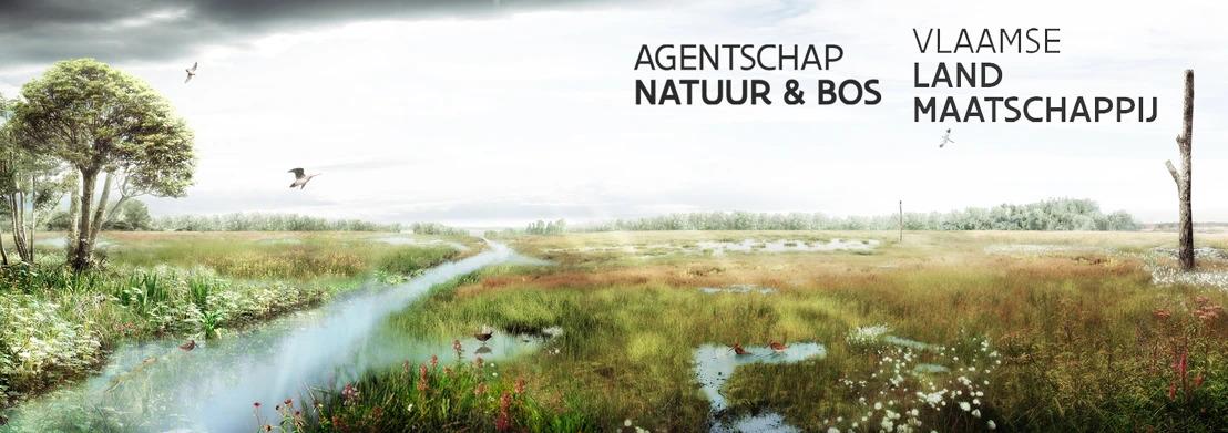Investering van 4.2 miljoen euro moet vallei rond de Zwarte Beek in Beringen verder herstellen