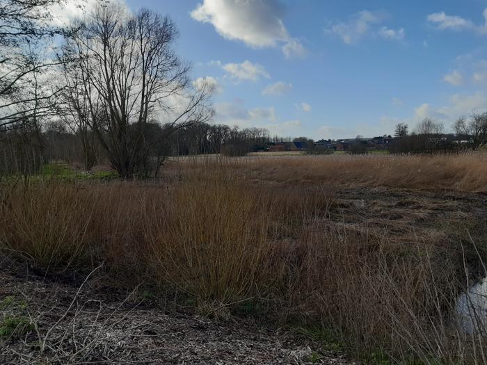 Provincie bestrijdt wateroverlast en verhoogt de waterbeschikbaarheid bij droogte