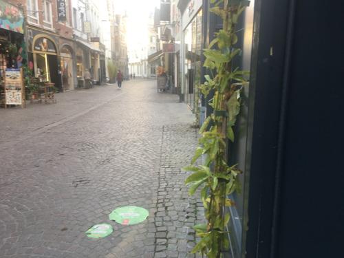 Winkelwandelgedeelte van de Mechelsestraat krijgt 40 gevelplanten