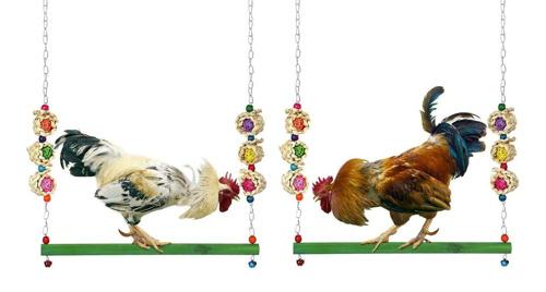 Un columpio para gallinas y otros productos raros que se venden en Mercado Libre para celebrar su cumpleaños 21
