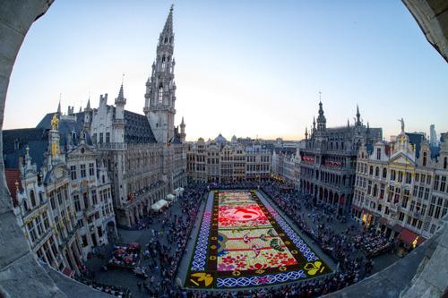 Le 20ème Tapis de Fleurs enfin déroulé sur la Grand-Place de Bruxelles