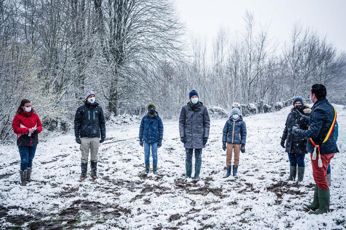 België krijgt er 14.000 bomen bij dankzij Luminus Forest in One Day