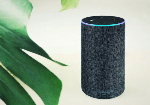 How Voice Assistants Are Helping the Environment—and How They Could Do More