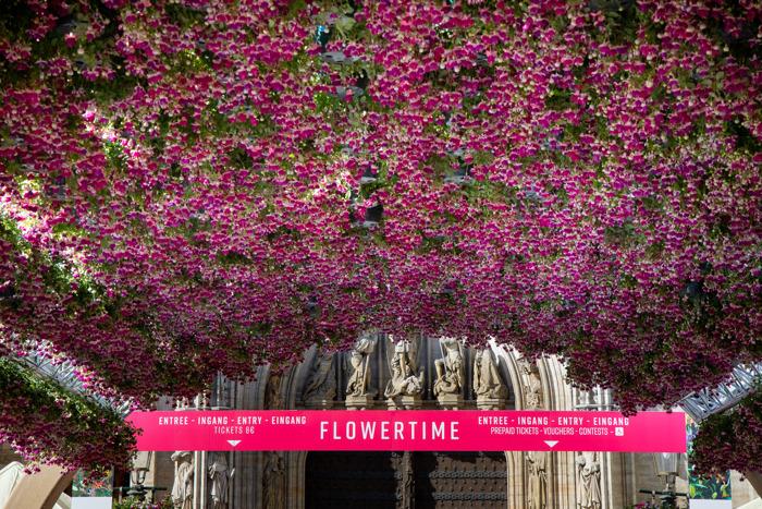 Flowertime tovert het Brusselse Stadhuis om tot een tuin van Eden