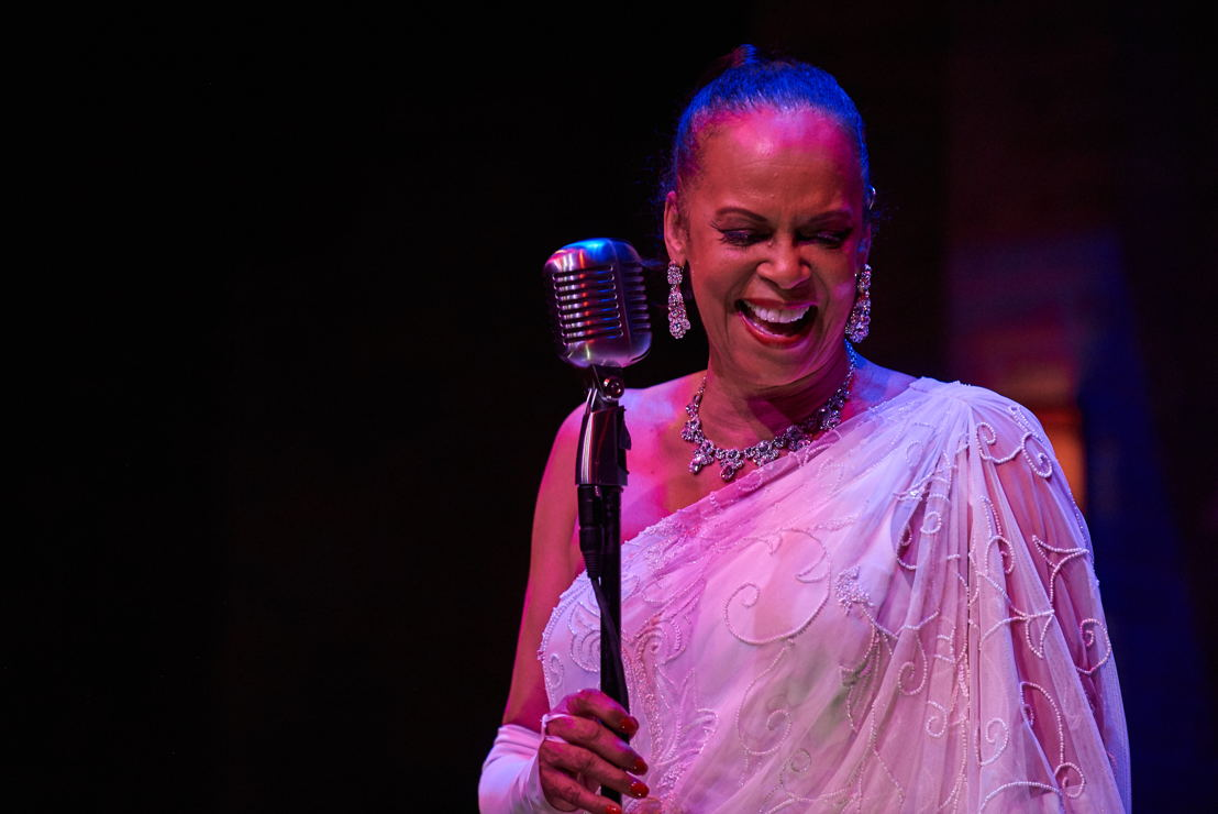 3. Terry Burrell (Billie Holiday) in LADY DAY (photo by Christopher Bartelski)