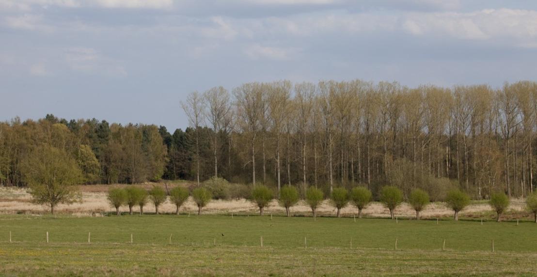 Lancering open oproep Landschapsparken en Nationale Parken Vlaanderen