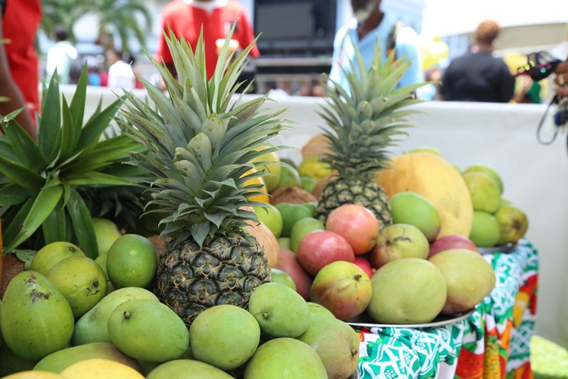 First Saint Lucia Mango Festival gathered 500 visitors !
