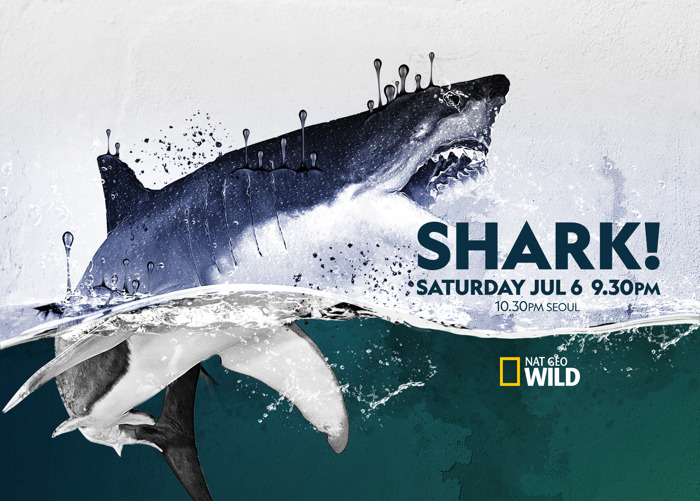 Shark! premieres on Nat Geo Wild Asia with eight weeks of fin-tastic programming this summer